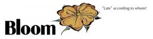 bloomlogo11-8dsmall