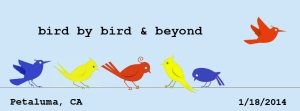 Check out Bird by Bird & Beyond with Anne Lamott!