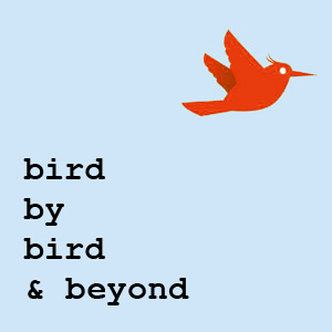 Back to Bird by Bird Main Page